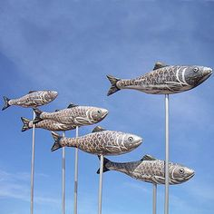 herring shoal by buy the sea | notonthehighstreet.com