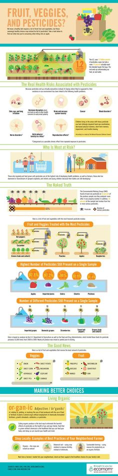 This info graphic on pesticides and organic foods is amazing, everyone should print this out at have it on your fridge!