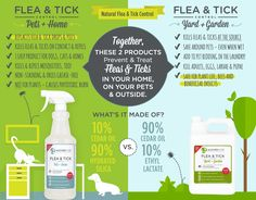 Natural Flea and Tick Control That Works Flea Spray For House, Flea In House, Flea And Tick Spray, Tick Spray For Dogs, Dog Flea Remedies, Home Remedies For Fleas, Ticks Remedies, Flea Remedy For Dogs, Flea Treatment For Yard