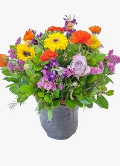 Cape Peninsula Flower & Gift Delivery for all occasions. Whether you are looking for luxury or budget, our flower shops have what you are looking for. Gift Delivery, Sparkles, Cape, Flowers, Plants, Gifts, Mantle, Cabo, Presents