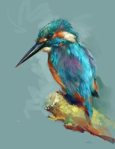 Kingfisher, Birds and Bird paintings on Pinterest