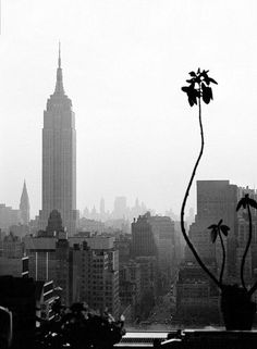 New York, by Marie Sechtlova & white Vintage Photography, Art Photography, Rhapsody In Blue, Black And White City, Female Photographers, Urban Design, Black And White Photography, Empire State Building, Old And New