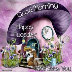 good morning sister Happy Tuesday