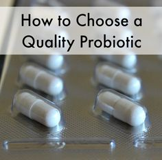 Refrigerated or shelf-stable? Additives? Strains? What should you look for when choosing a probiotic? Don't miss these tips for choosing a high quality probiotic.
