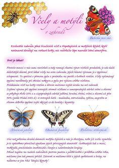 Kartičky návrhy — KT gardens ktgardens Land Art, Growing Plants, Indoor Plants, Insects, Bee, Gardens, Biology, Inside Plants, Honey Bees
