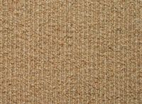 Green Goods is your source for Eco-Friendly Building Supplies. We specialize in non-toxic, sustainable building materials for your residential, commercial or industrial space. Sustainable Building Materials, Carpet Trends, Berber Carpet, Eco Friendly House, Wool Carpet, Home Improvement, New Homes, Home And Garden, House Styles