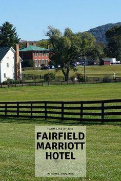 Check out what I saw: http://travelaine.com/fairfield-marriott/