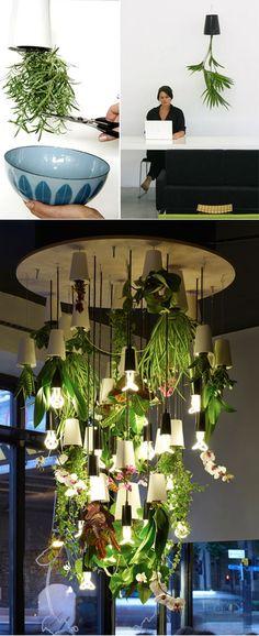 Grow Indoor Plants Upside Down Tutorial LIKE Us on Facebook ==> https://www.facebook.com/UsefulDiy