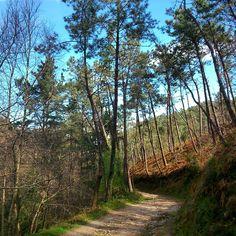 Sendero en #Asturias