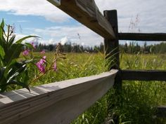 DIY Split Rail Fence Installation