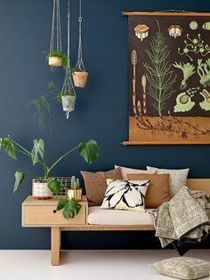 bench wallcolour plants I bank wandfarbe pflanzen kissen dekoration