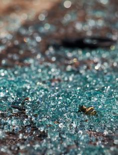 On the sidewalk - Broken automobile glass on the sidewalk next to the car wreck along with small parts Name Boards, Broken Glass, City Photo, Automobile, Sidewalk, Car, Photography, Photograph, Side Walkway