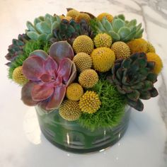 Succulent floral arrangement for Mothers Day.  http://www.parkerspetals.com/ or email me at jaime@parkerspetals.com