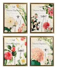 Look at this Parisian Botanicals Framed Canvas - Set of Four on #zulily today!