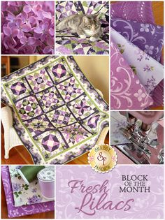 "Fresh Lilacs BOM    Bring your lilacs inside with the Fresh Lilacs quilt!  This beautiful design features the Fresh Lilacs collection by Debbie Beaves for Maywood Studio.  Finishing to 50"" x 63"", this stunning quilt features basic piecing but will wow your guests with its complex look!"