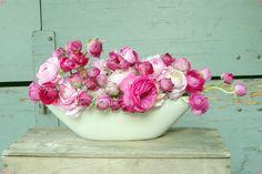 Pink Ranunculas in Modern Bowl    www.dandelionranch.com