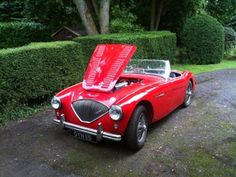 Austin Healey 100/4 BN1 (1954) - Bill Rawles Classic Cars