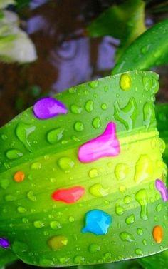 Rainbow Water Drop Splash   Via Siafanar Bos