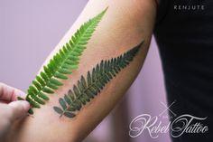 #tattoo #inked #tattooed #leg #colortattoo #color #rebel #tattoo #riga #renjute #fern #herb #plant #green #petite #small #tiny #inner #arm