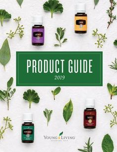 I began my journey with Young Living's Essential Oil Premium Starter Kit. Young Living now offers several ways to get started depending on what is the best fit for your goals. You… Read more › Young Living Oils, Young Living Essential Oils, Box Cards Tutorial, Thieves Household Cleaner, Pop Up Box Cards, Copaiba, English Words, Starter Kit, Peppermint