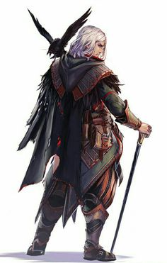 Human Wizard with Familiar - Pathfinder PFRPG DND D&D d20 fantasy