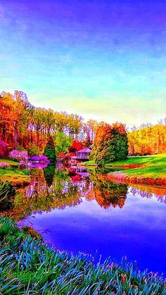 Casa de chá no lago.  Fotografia: Robert Saddler.