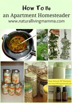 How to be an apartment homesteader! Real tips for real people in small spaces.