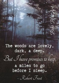 Robert Frost Quote: The woods are lovely dark & deep. But I have promises to keep and miles to go before I sleep. Sassy Quotes, Life Quotes Love, Super Quotes, New Quotes, Poetry Quotes, Words Quotes, Inspirational Quotes, Sayings, Funny Quotes