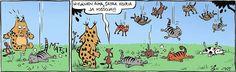 Kamala luonto 11.8. sataa kissoja ja koiria
