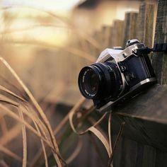 Photography Camera, Girl Photography Poses, Creative Photography, Dream Photography, Old Cameras, Vintage Cameras, Camera Art, Digital Camera, Film Camera