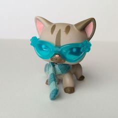 Littlest Pet Shop #1206 Shorthair Cat w/Scarf & Glasses RARE-  Free Shipping! #Hasbro