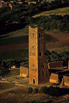 قلعة المنصورة - تلمسان الجزائر