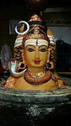 Shivai Namo