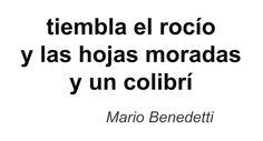 Haiku de Mario Benedetti