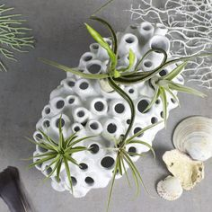 Coral Branch Bud Vase, White Ceramic Modern Minimalist Seaside Vase Beach House…