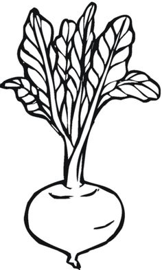Click Beetroot 3 Coloring page for printable version