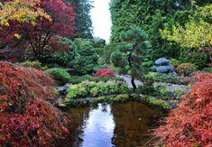 Japanse tuin - Tuininspiratie - De Baat Tuinmaterialen