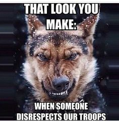 Yeap, that's pretty much my face.  Add that this Texas grammy, will still stand up to anyone that disrespects our troops and veterans.