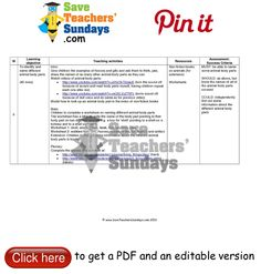 Year 1 Lesson 9 animal body parts worksheets, lesson plans and other primary teaching resources Primary Teaching, Teaching Activities, Teaching Resources, Save Teachers Sundays, Seasons Lessons, Animal Body Parts, Success Criteria, Lesson Plans, Worksheets