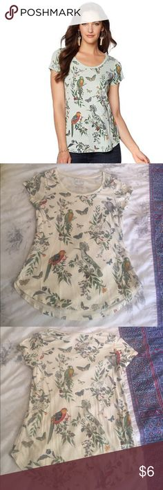 ❌ SOLD Lucky Brand 'Crazy Parrot' Print-Scoop Tee Stretch, soft jersey knit and fitted to curves. Approx 26 inches in L. Casual, loved it to pair with a corduroy skirt. Lucky Brand Tops Tees - Short Sleeve
