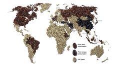 Caffe.it - Storia - Diffusione del Caffè in Italia e nel Mondo