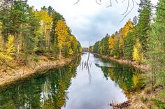 Wer weiß wo das ist?   #landscape #landschaft #soschönistdeutschland #see #lake #reflection #trees #wald #natur #nature #naturelovers #germany #weroamgermany #herbst #autumn #colors #farben #spaziergang #wandern #unterwegs