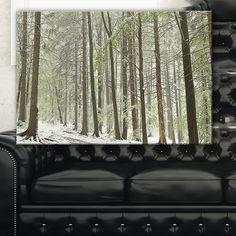 Spring Beech Forest Scenery - Landscape Photo Art Print