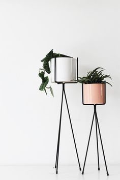Love these geometric metallic plant stands. So simple, but would add some real glamour into your home.