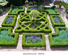 this stock image: Traditional Knot Garden at an Oxfordshire house - from Alamy's library of millions of high resolution stock photos, illustrations and vectors. this stock image: Traditional Knot Garden at an Oxfordshire house - from Alamy's Formal Garden Design, English Garden Design, Small Garden Design, Boxwood Garden, Topiary Garden, Herb Garden, Vegetable Garden, Formal Gardens, Outdoor Gardens