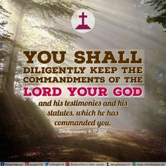 You shall diligently keep the commandments of the Lord your God, and his testimonies and his statutes, which he has commanded you. Deuteronomy 6:17 ESV