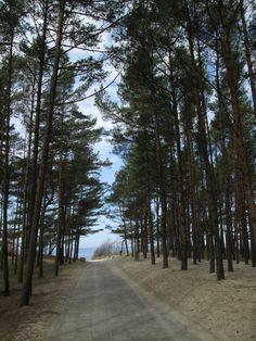 Pathway to the sea - Palanga - Lithuania credit: We love Lithuania ( FB ) Romantic Honeymoon, Romantic Places, Romantic Vacations, Romantic Getaways, Romantic Travel, Beautiful Places, Lithuania Travel, Baltic Region, Summer Bucket Lists