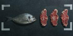 AEG Tasteology - Verschiedene Fleisch- und Fischarten