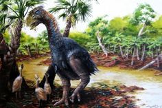 Giant flightless bird once walked the Arctic - UPI.com   Some 53 million years ago, a tall, flightless bird weighing several hundred pounds walked the hills of the high Arctic.