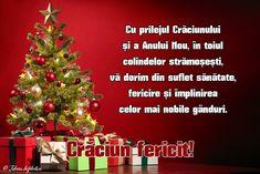 imagini sarbatori in familie – Căutare Google Christmas Tree, Holiday Decor, Sewing Shorts, Holidays, Google, Noel, Teal Christmas Tree, Holidays Events, Xmas Trees